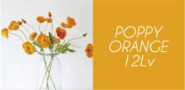 ポピーオレンジ